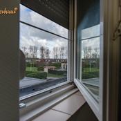 heggerank-1a-rivageverhuur-nieuwvliet-h0895.jpg