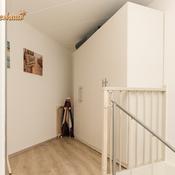 heggerank-42-nieuwvliet-n2668.jpg